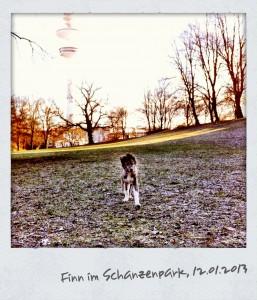 Finn_Schanzenpark